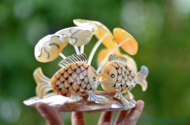 Cá chép đôi làm từ vỏ sò ốc QLN_18 - © bản quyền hình ảnh thuộc VoOcBien.com