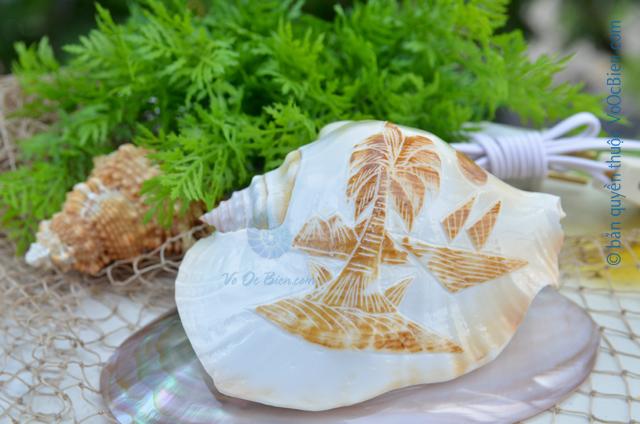 Đèn ngủ vỏ ốc bàn ủi khắc ĐN31 - © bản quyền hình ảnh thuộc VoOcBien.com