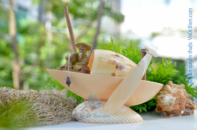 Ghe ông câu vỏ sò ốc QLN_19 – © bản quyền hình ảnh thuộc VoOcBien.com