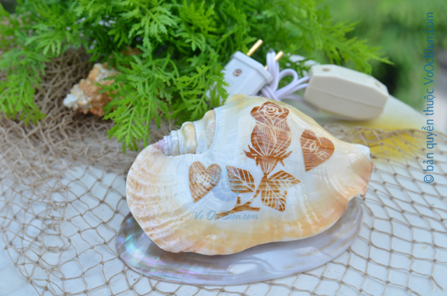 Đèn ngủ vỏ ốc bàn ủi khắc ĐN32 - © bản quyền hình ảnh thuộc VoOcBien.com