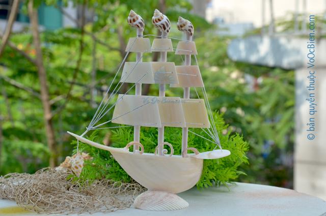 Thuyền buồm vỏ ốc (nhỏ) TB26_T - © bản quyền hình ảnh thuộc VoOcBien.com