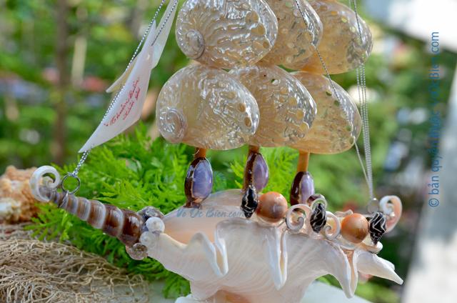 Thuyền buồm vỏ ốc trung TB24 – © bản quyền hình ảnh thuộc VoOcBien.com