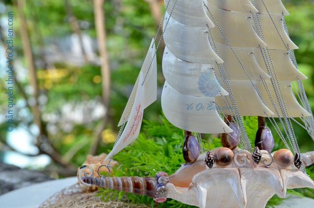 Thuyền buồm vỏ ốc trung TB25 – © bản quyền hình ảnh thuộc VoOcBien.com