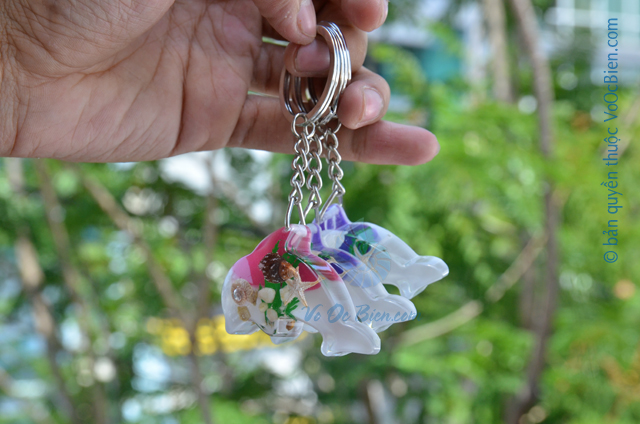 Móc khoá vỏ sò ốc - cá heo MK_06 - © bản quyền hình ảnh thuộc VoOcBien.com