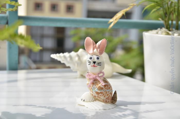 Chú mèo tai hồng vỏ sò ốc QLN_39
