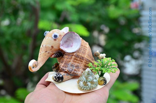 Chú voi vỏ sò ốc QLN_35