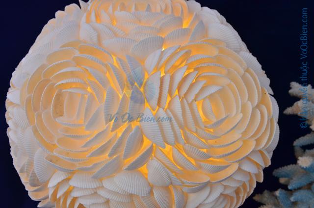 Đèn để bàn vỏ sò ốc kết hoa (tròn)