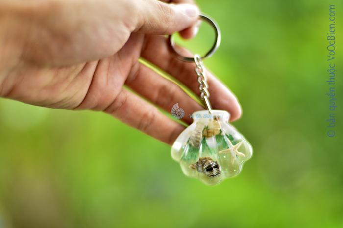 Móc khoá vỏ sò ốc – sò điệp MK_11