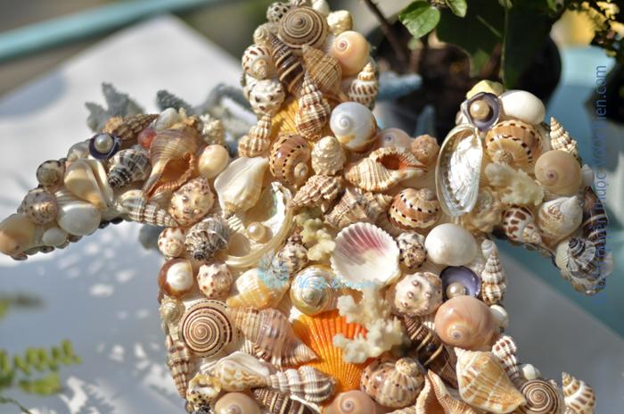 Tranh rùa biển vỏ sò ốc TO26