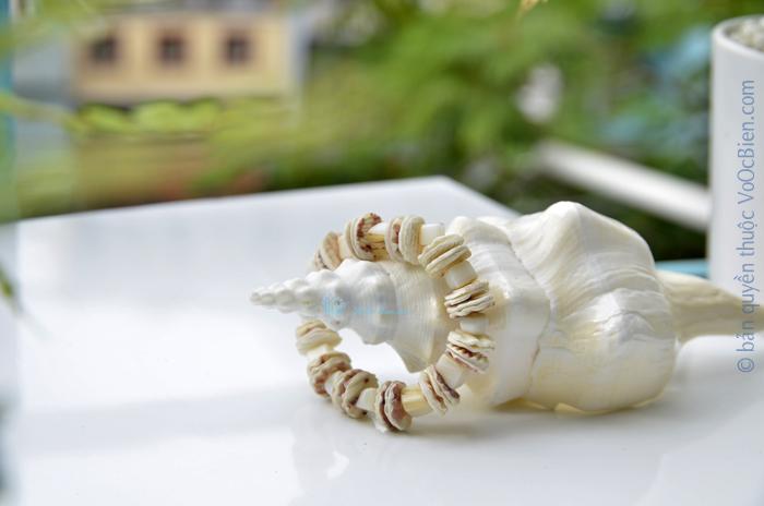 Lắc tay vỏ sò điệp trắng LDT_40