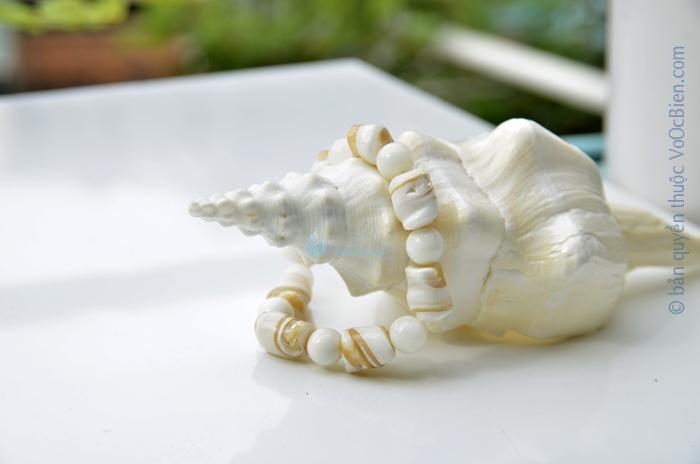 Lắc tay vỏ ốc đụn trắng LDT_39