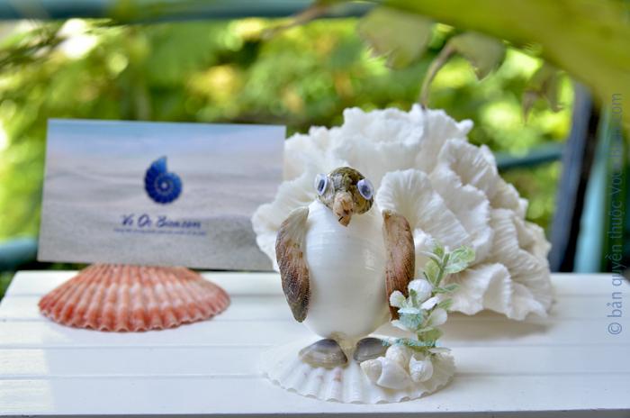 Chim cánh cụt ốc mỡ trắng QLN_42